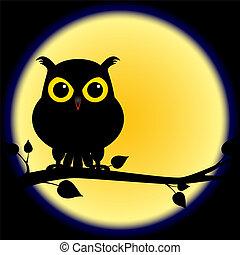 gufo, pieno, silhouette, ramo, luna