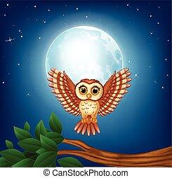 gufo, volare, cartone animato, notte
