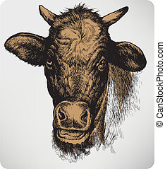 hand-drawing., vettore, illustration., animale, mucca