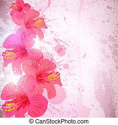 ibisco, fiore, astratto, tropicale, fondo., design.