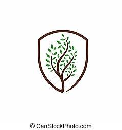 icona, albero, concetto, scudo