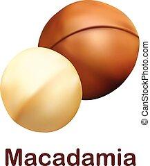 icona, realistico, stile, macadamia