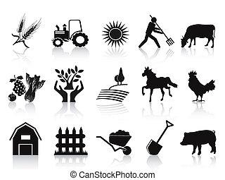 icone, nero, set, fattoria, agricoltura