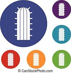 icone, set, cactus, cereus, candicans