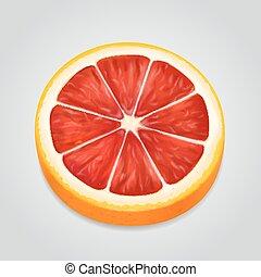illustrazione, vettore, frutta, realistico, pompelmo, fetta, 3d