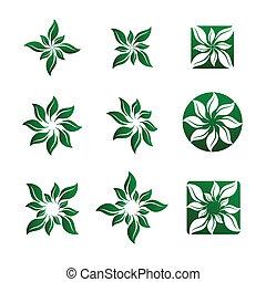 illustrazioni, fiore, foglia, vettore