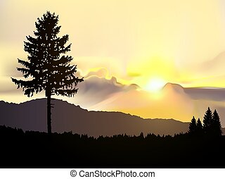 immagine, paesaggio., tramonto