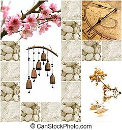 immagini, zen-come, collezione