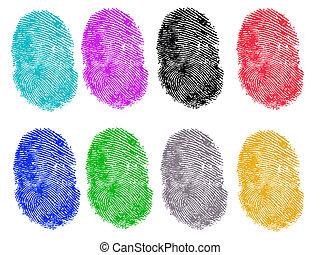 impronte digitali, colorato, 8