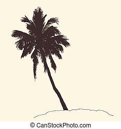 incisione, schizzo, vendemmia, albero, vettore, palma, generosità