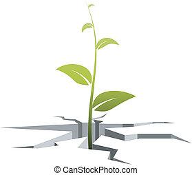 incrinature, germe, illustrazione, vettore, fuori, grows, suolo