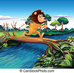 incrocio, correndo, fiume, mentre, leone