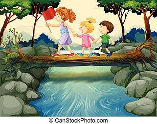 incrocio, legnhe, fiume, bambini