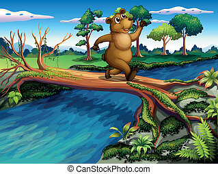 incrocio, mentre, fiume, correndo, orso