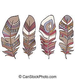indiano, etnico, penne, piumaggio