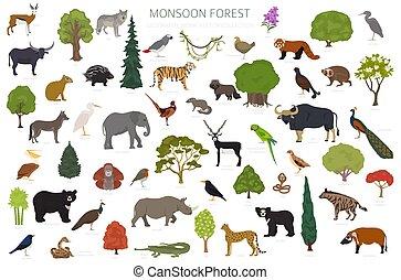 infographic., animali, regione, monsone, foresta, mondo, disegno, ecosistema, map., vegetations, terrestre, set, naturale, biome, uccelli