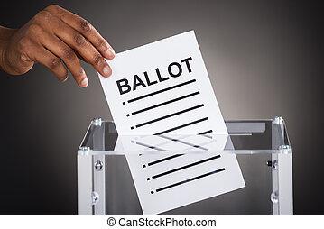 inserire, scatola, persona, scheda elettorale, mano