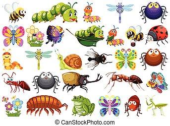 insetti, bianco, set, fondo