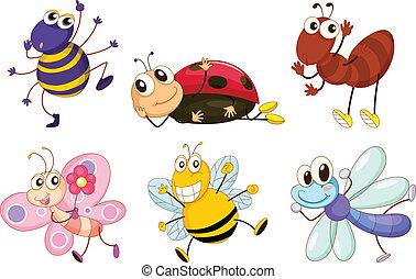insetti, differente, errori del software