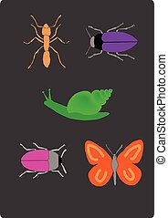 insetti, set, illustrazione