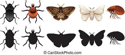 insetti, silhouette, set