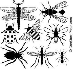 insetto, otto, silhouette
