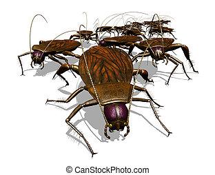 invasione, bug's, -, scarafaggio, vista