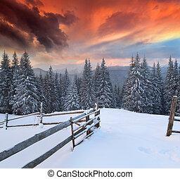 inverno, colorito, drammatico, paesaggio, montagne., alba