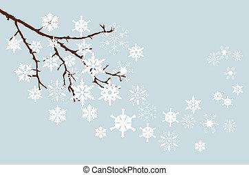 inverno, ramo