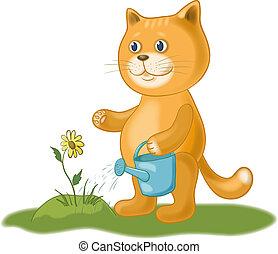 irrigazione, fiore, gatto