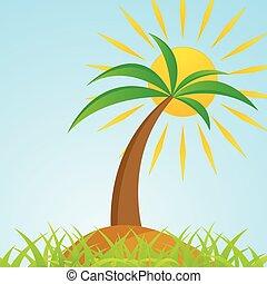 isola, albero, tropicale, palma, sole, baluginante