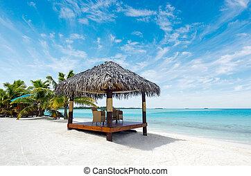 isola, bungalow, oceano pacifico, spiaggia tropicale