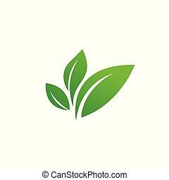 isolated., eco, verde, illustrazione, icona, foglia, vettore