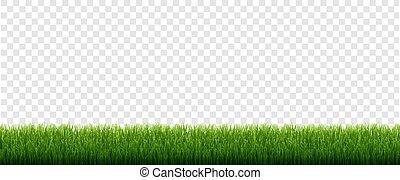 isolato, bordo, verde, trasparente, fondo, erba