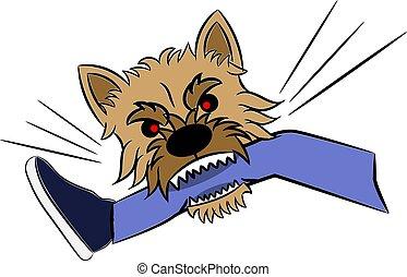 isolato, gamba, schizzo, bianco, terrier, umano, illustrazione, mordente, cane, norwich