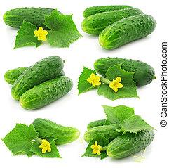 isolato, verde, mette foglie, frutte, verdura, cetriolo