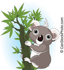 koala, carino, albero