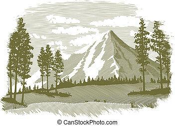 lago montagna, woodcut, scena
