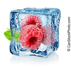 lamponi, cubo, isolato, ghiaccio