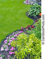 landscaped, iarda, giardino