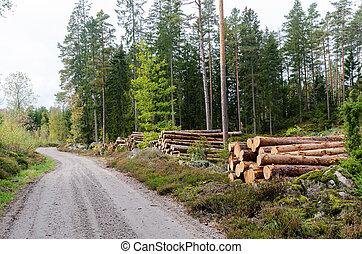 lato strada, legname, paese, accatastare