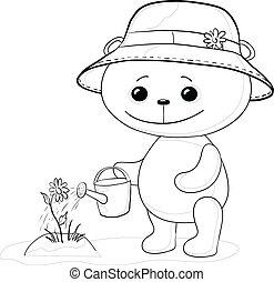 lattina, irrigazione, contorno, orso, teddy