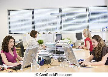 lavorando ufficio, donne