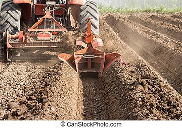 lavorativo, agriculture., suolo, preparazione, campo, trattore