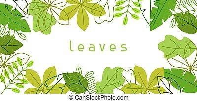 leaves., bandiera, o, primavera, naturale, stilizzato, estate, fogliame verde