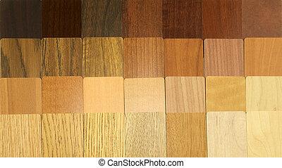 legno, campioni