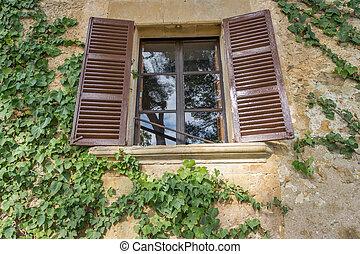 legno, coperto, vecchio, finestra, edera