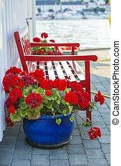legno, geranio, fiori, rosso, panca
