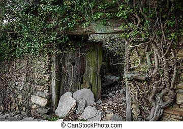 legno, vecchio, porta, rovinato