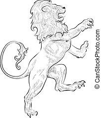 leone, illustrazione